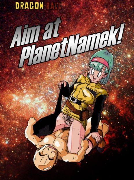 Aim at PlanetNamek