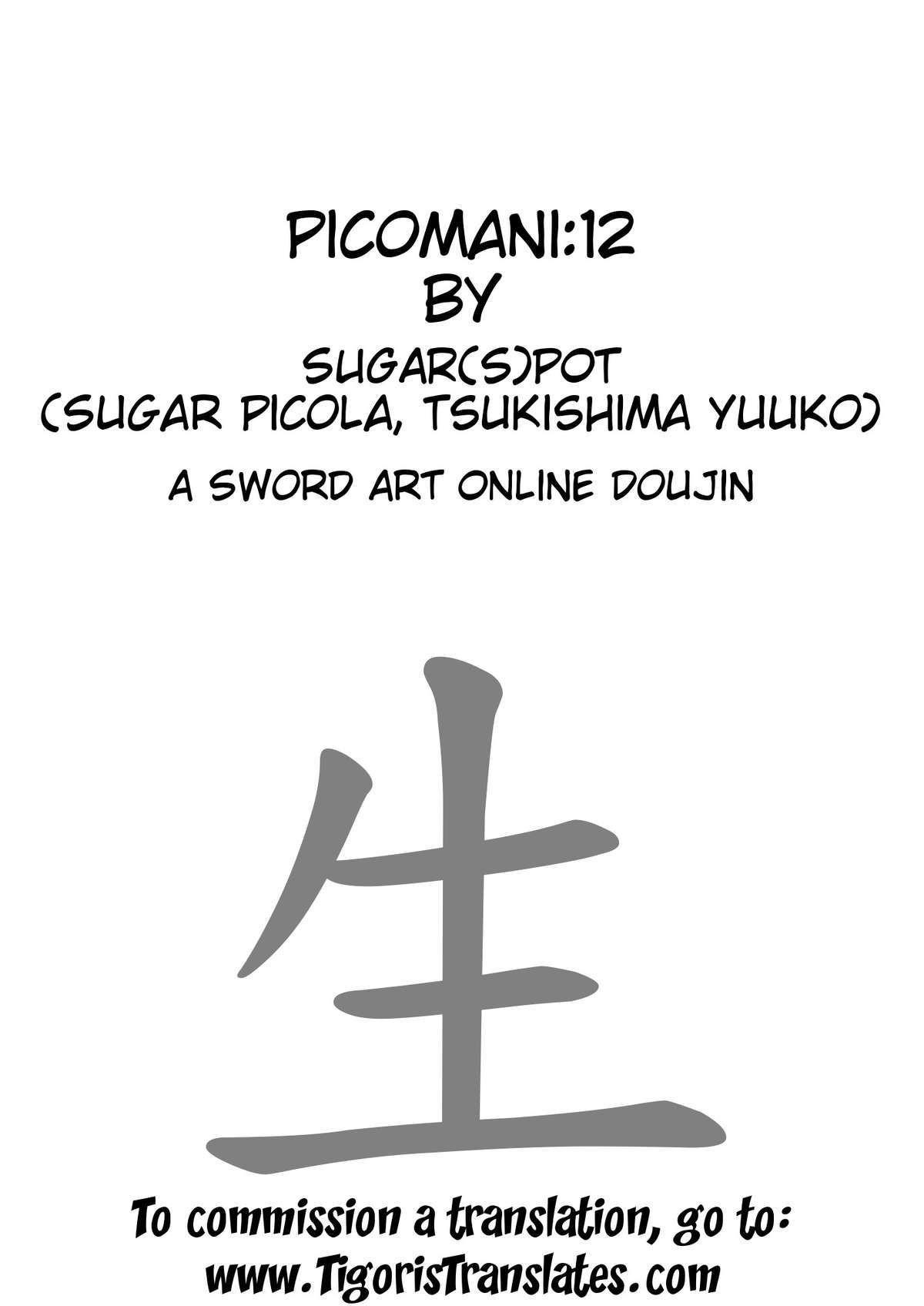 Picomani 12 03